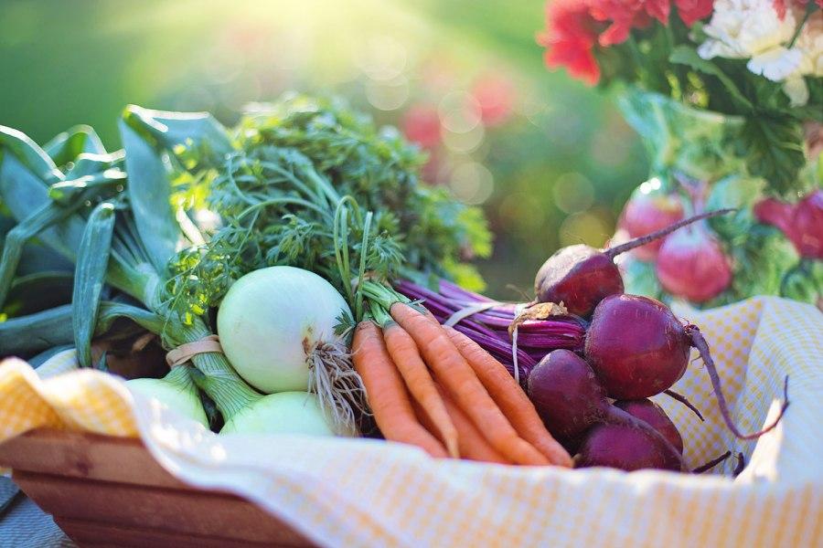 57 6 simple ways that you can burn fat organic